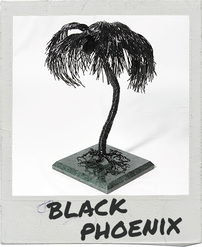 black-phoenix-polaroid