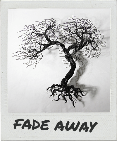 fade-away-polaroid