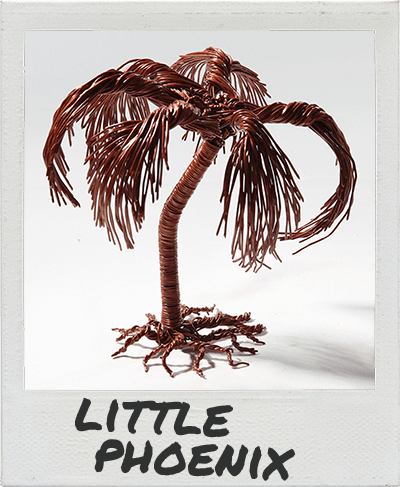 little-phoenix-polaroid