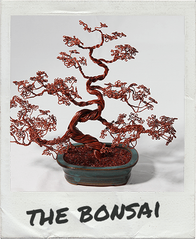 the-bonsai-polaroid