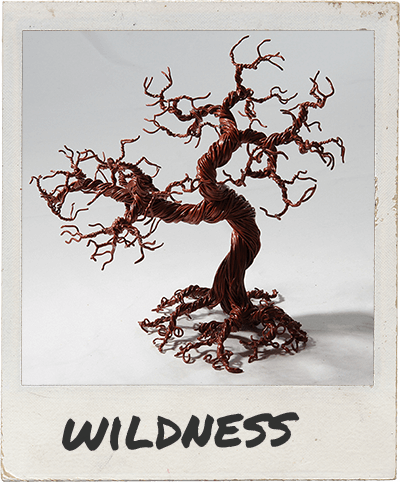 wildness-polaroid